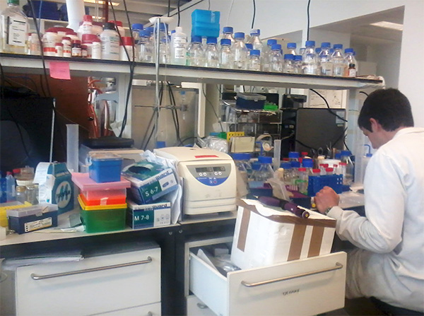Lab at Manchester Interdisciplinary Biocentre