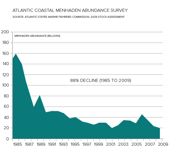 Menhaden Population Decline