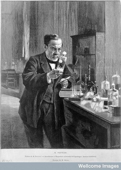 Louis Pasteur (1822–189)